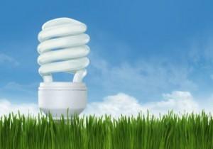 elektra-taupancios-lemputes