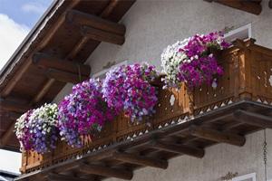 Balkonas-2