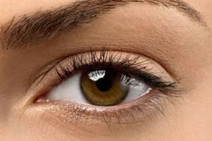 moters-akis