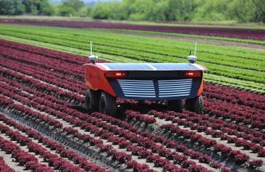 Ar agrosektoriuje gali uždirbti milijoninį pelną?