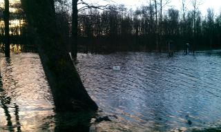 potvyniu-zonos