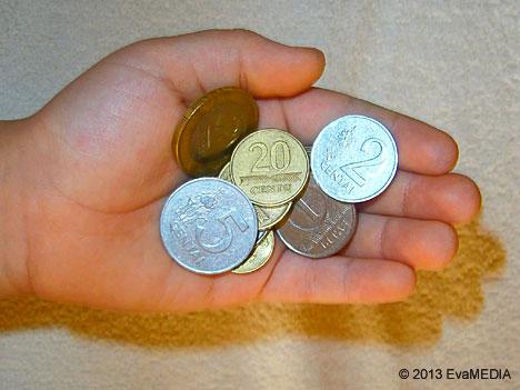 sauja-pinigu