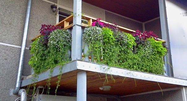 Patarimai: gėlių kompozicijos balkone