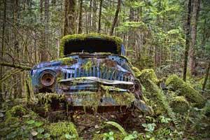 Miškų keliai – jau geresni