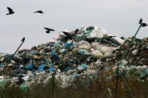 Atliekų deginimas: mitai ir realybė