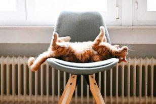 Temperatūros svarba miegui – kaip atvėsinti kūną naktimis?