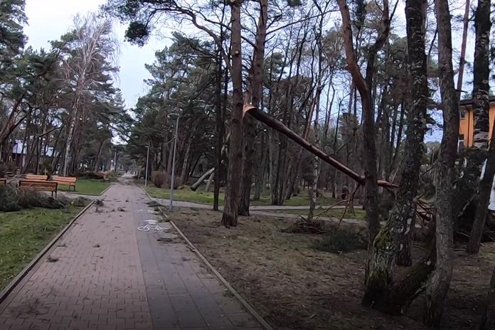 Nusiaubusios audros nuostoliai – apie pusantro milijono eurų